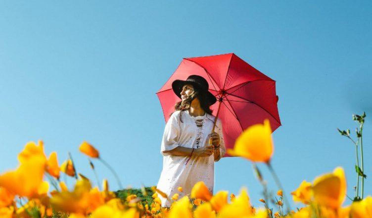 Beskyt dig i solen